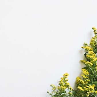 Frühlingskonzept mit wildflowers auf recht
