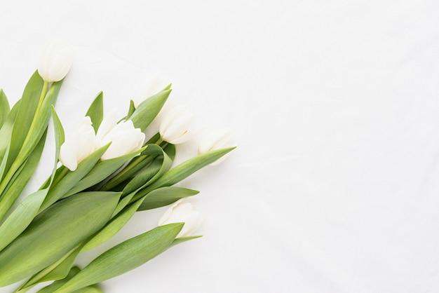 Frühlingskonzept. weißer tulpenstrauß auf weißem stoffhintergrund für modellentwurf mit kopienraum