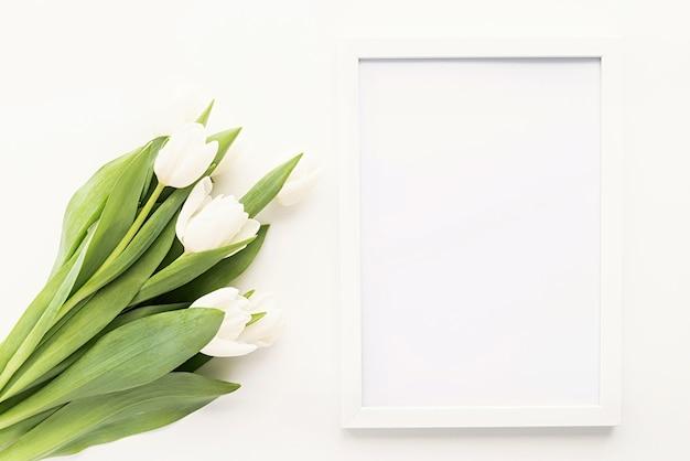 Frühlingskonzept. weißer tulpenstrauß und leerer rahmen für modellentwurf auf weißem hintergrund mit kopienraum