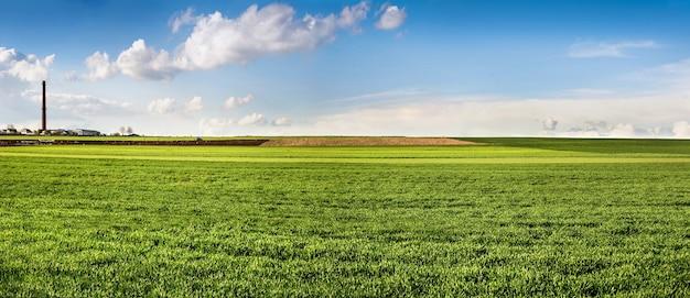 Frühlingslandschaftspanorama der grünen wiese und der häuser am horizont und am himmel