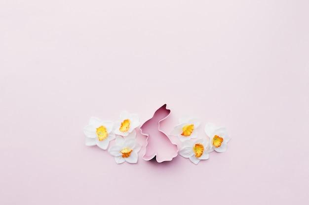 Frühlingsnarzisse, hasen-osterform zum backen. rosa hintergrund. hochwertiges foto