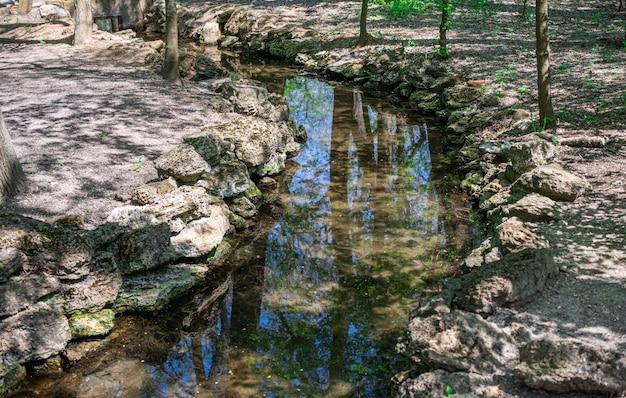 Frühlingsnebenfluß am askania-nova zoo in der ukraine