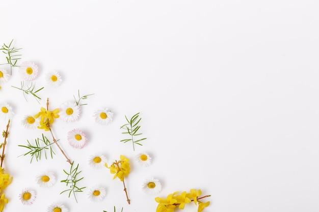 Frühlingsrahmen aus kleinen blumen und gänseblümchen, blumenarrangement auf weißem hintergrund. frühling, sommer, ostern-konzept. flache lage, ansicht von oben, kopienraum