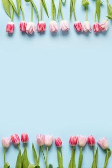Frühlingsrahmen der rosa tulpen auf blau. blumenmuster.