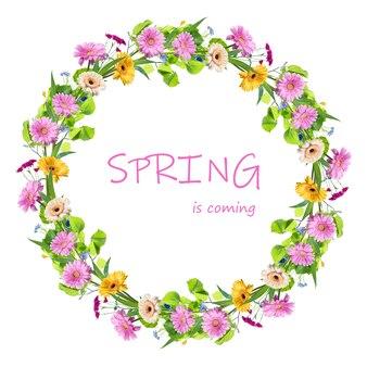 Frühlingsrahmen von den natürlichen gerberablumen lokalisiert auf weiß