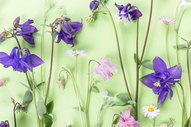 Frühlingssommerrahmen aus kleinen blauen und rosa blumen, blumenarrangement auf grünen backgrouns