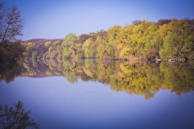 Frühlingswald am ufer des flusses spiegelt sich im wasser, filter