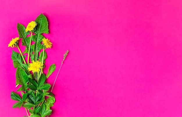 Frühlingswildblumen auf einer rosa oberfläche