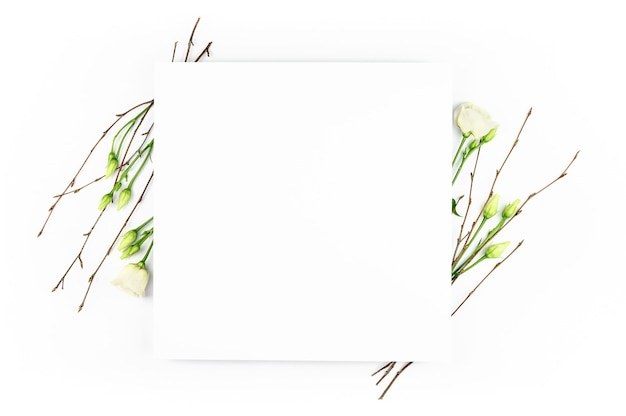 Frühlingszusammensetzung. weiße blumen, papier leeren weißen hintergrund. flache lage, draufsicht, kopierraum, modell.