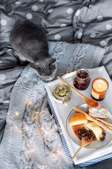 Frühstück im bett, ein tablett mit käse, grissini, marmelade aus jungen tannenzapfen, champagner und einer kerze