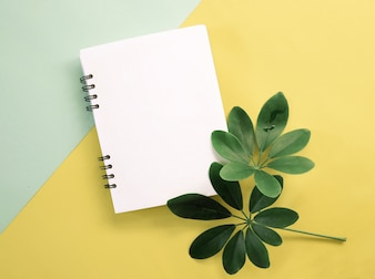 Frühlingsgrünblätter mit leerem Notizbuch
