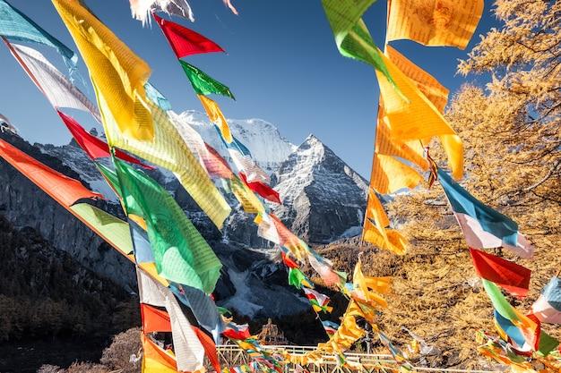 Fünf farbgebetsflaggen, die auf xiannairi-berg mit kiefernwald im herbst fliegen