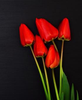 Fünf rote blühende tulpen