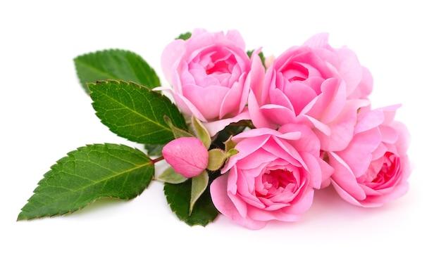 Fünf schöne rosa rosen isoliert.