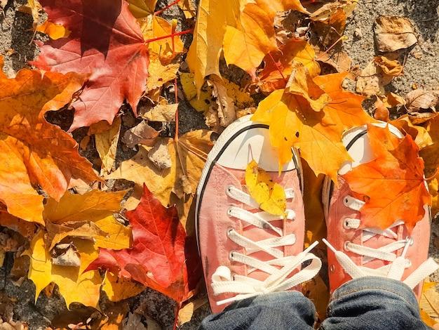 Füße in turnschuhen, die in einem haufen trockener orangefarbener und gelber herbstblätter stehen, sonniger herbsthintergrund