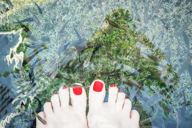 Füße selfie mit peeling füße fisch berühmte thermalsee vouliagmeni athen riviera attika griechenland