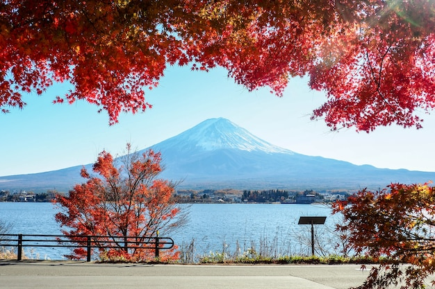 Fuji berg in der herbstsaison