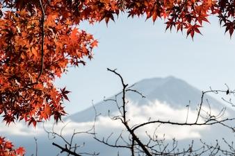 Fuji-Berg in Japan, Morgenhimmel im Herbst.