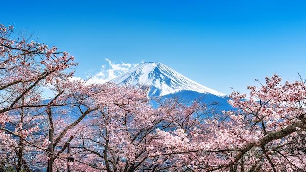 Fuji berg und kirschblüten im frühjahr, japan.
