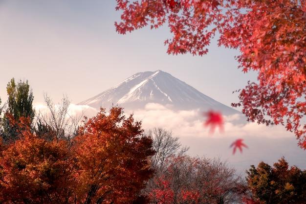 Fuji-san-berg im rot verlässt ahorn im herbst