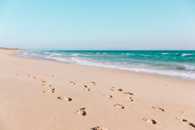 Fußabdrücke im sand am strand