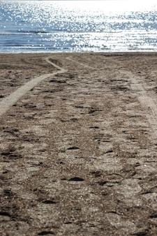 Fußabdrücke von menschen auf sand. meeresstrand bei sonnenuntergang. sonnenfleck auf dem wasser. umgebung. natürlicher hintergrund