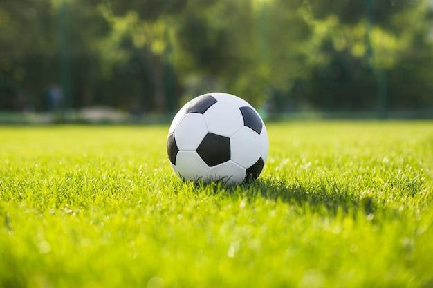Fußball im gras liegen
