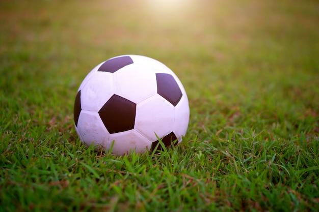 Fußballfußball am grünen feld im stadion vor dem match