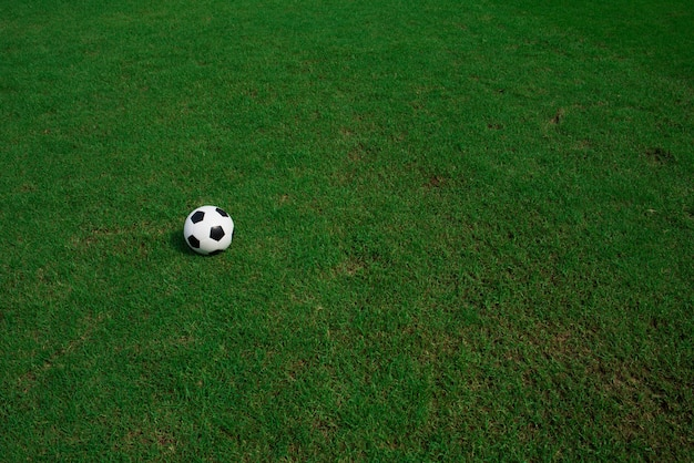 Fußballkugel auf gras mit stadionhintergrund