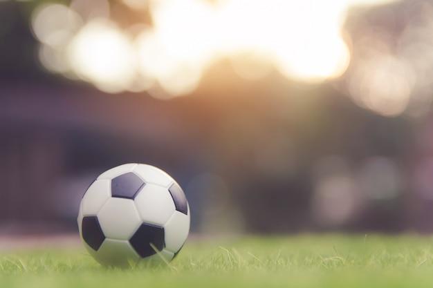 Fußballkugel auf grasgrünfeld mit exemplarplatz