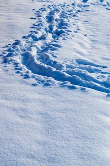 Fußspuren im schnee