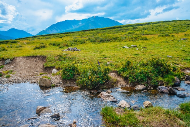 Fußweg durch mountain creek im tal zu fernen wunderschönen riesenbergen. wanderweg. reiche flora des hochlands. bunte vegetation nahe wasserstrom. erstaunliche sonnige landschaft der majestätischen natur.