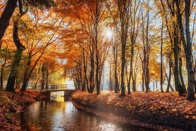 Fußwegbrücke über fluss mit bunten bäumen