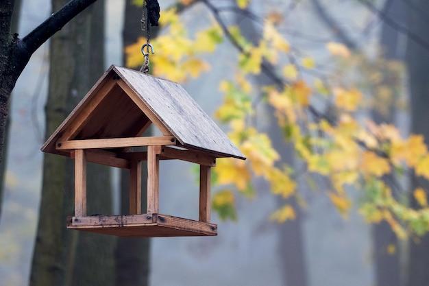 Futterautomat für vögel im herbstpark. herbstpark am morgen mit nebel