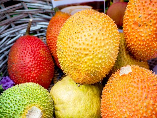Gac-frucht oder baby-jackfrucht, cochinchin-kürbis, stacheliger bitterer kürbis, süßer kürbis (momordica cochinchinensis)