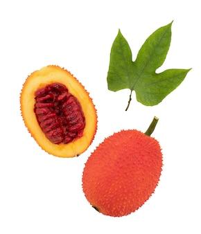 Gac-früchte isoliert auf weißem hintergrund mit beschneidungspfad. ansicht von oben, flach.