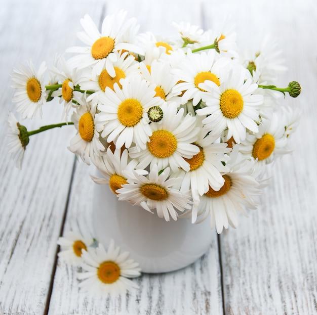 Gänseblümchen in der vase