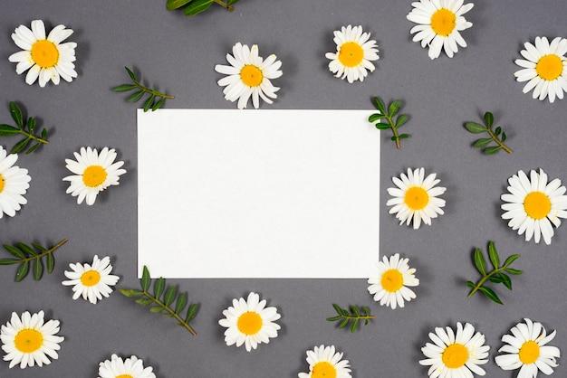 Gänseblümchen verstreut um den rahmen Premium Fotos