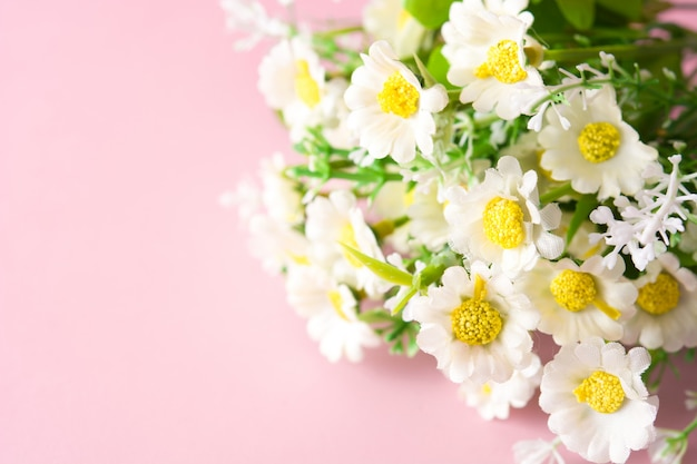 Gänseblümchenblume auf rosa, copyspace
