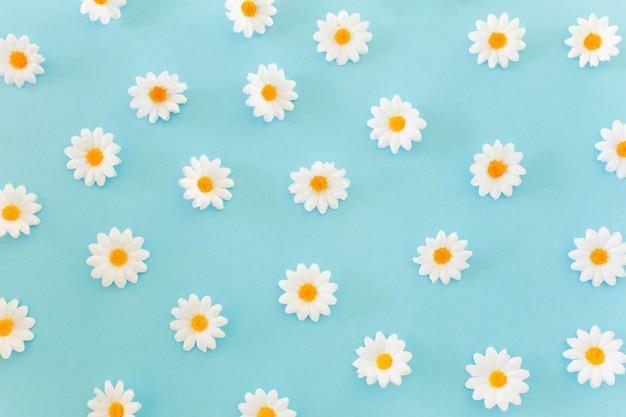 Gänseblümchenmuster auf blauem hintergrund