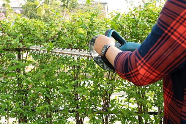 Gärtner, der eine elektrische heckenschere hält, um die baumkrone im garten zu schneiden.