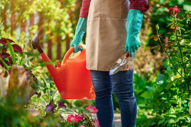 Gärtner gießt und pflanzt blumen im hausgarten. gartenarbeit und blumenzucht, blumenpflege