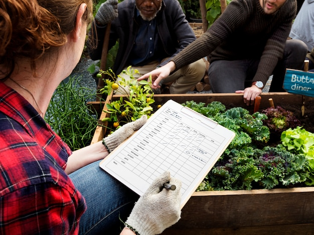 Gärtner-hobby-landwirtschafts-hinterhof-grün