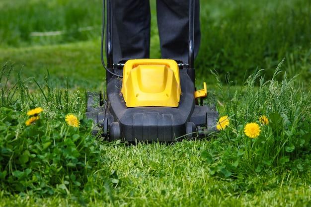 Gärtner mäht gras im hinterhof mit elektrischem rasenmäher, vorderansicht