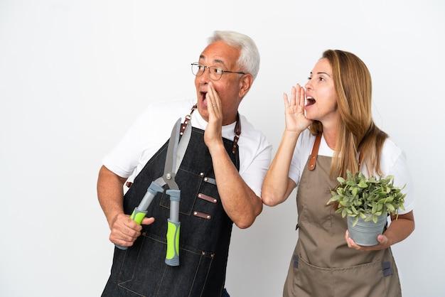 Gärtner mittleren alters, die eine pflanze und eine schere halten, die auf weißem hintergrund isoliert sind, schreien mit weit geöffnetem mund zur seite
