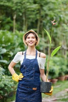 Gärtner posiert mit blumentopf