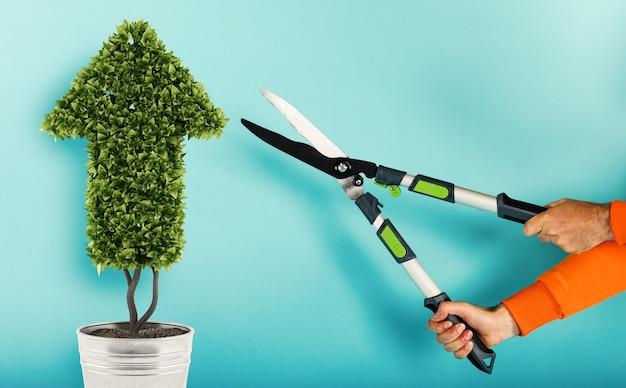 Gärtner schneidet eine pflanze mit einer form des pfeilkonzepts des erfolgs und der verbesserung cyan hintergrund
