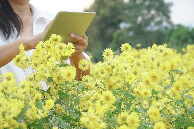 Gärtner suchen in blumengärten nach schädlingen und krankheiten