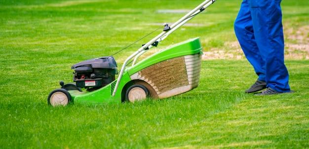 Gärtnerarbeiter, der gras mit mäher auf den rasenfeldern des hinterhofs mäht