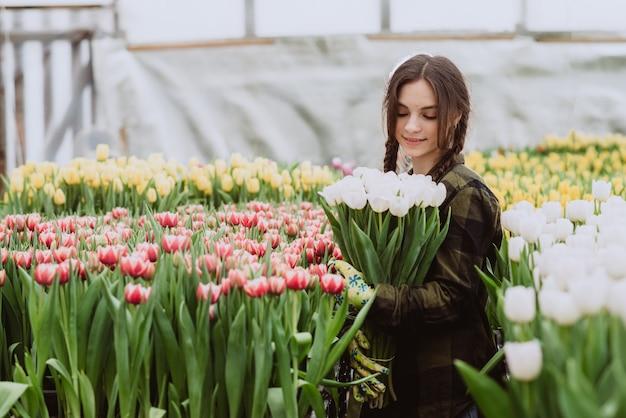 Gärtnerin der jungen frau hält einen strauß tulpen, die in einem gewächshaus gewachsen sind.